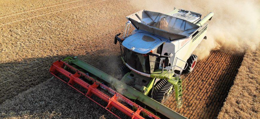 В России с 83% площадей намолочено более 105 млн тонн зерна