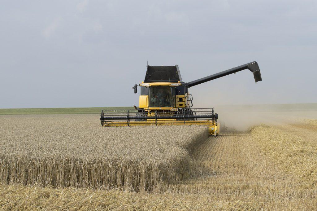 Сводная таблица цен на зерновые культуры и муку в тенге за тонну по Казахстану на 20.12.2019 года, в т.ч. НДС 12%