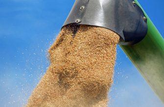 Вьетнам возобновил закупки российской пшеницы