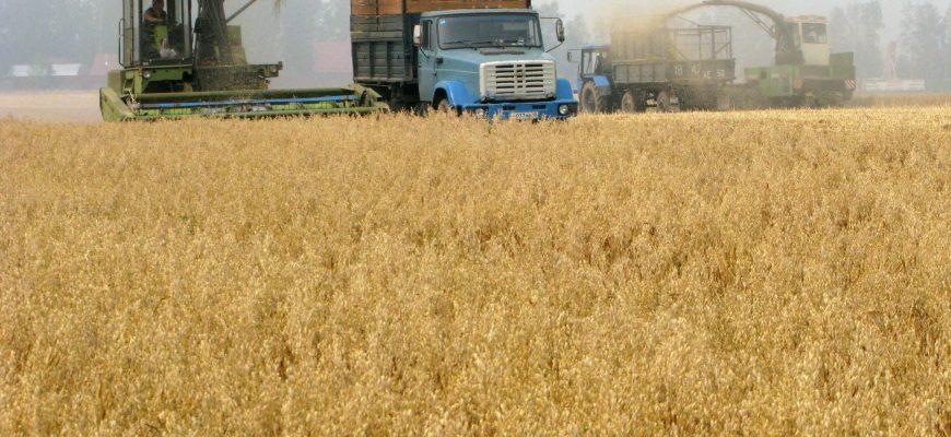 Россия: В Татарстане хотят завершить уборку зерновых за 30-35 дней