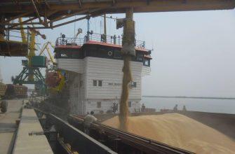 Два судна с пшеницей прибыли в порт сирийского Тартуса