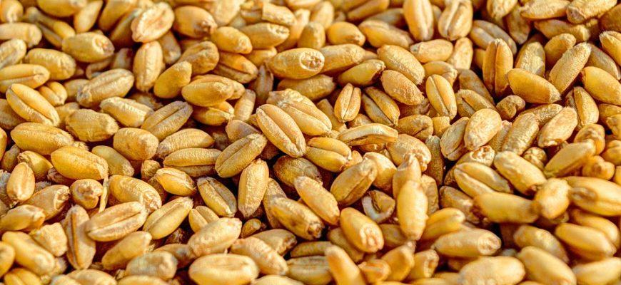МСХ России утвердило минимальные цены на зерно в случае проведения интервенций