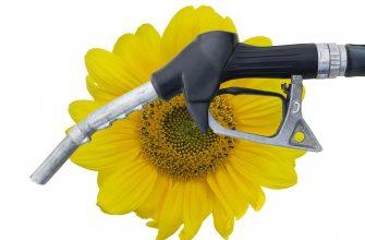 В США придумали новый план по увеличению производства биотоплива
