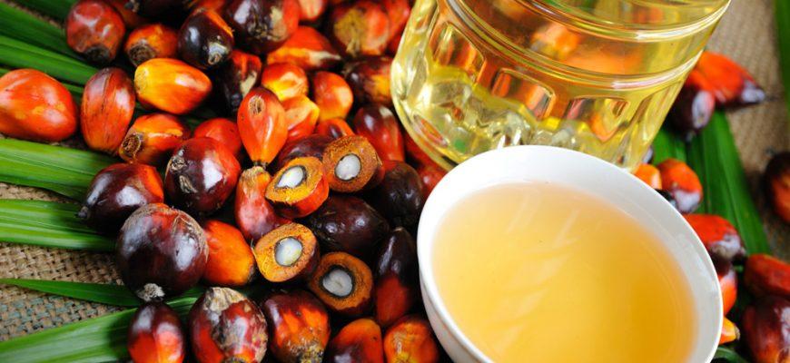 Борьба с фальсификатом важнее, чем повышение НДС на пальмовое масло - эксперт