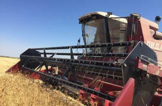 Хозяйства Жамбылской области намолотили более 452 тысячи тонн зерна