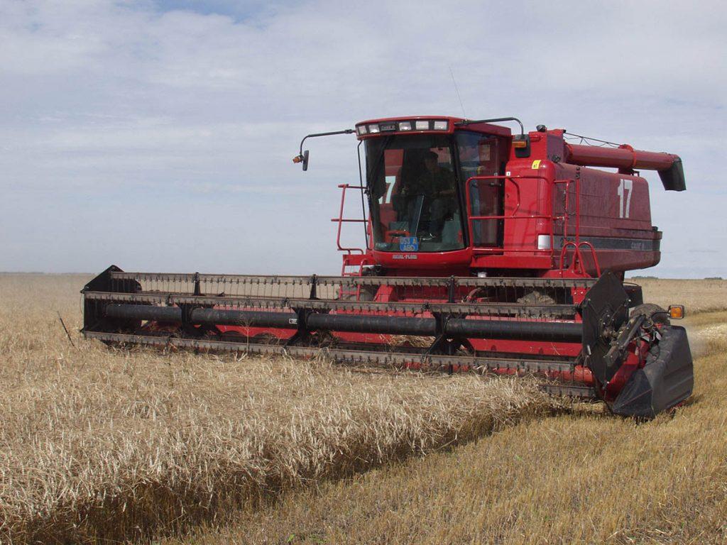 Мировые цены на зерновые не останавливаются в росте