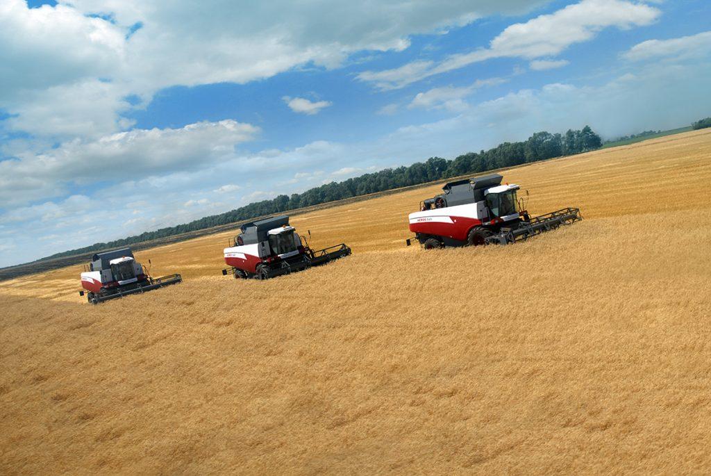 Уборка ранних зерновых на Дону начнется в ближайшее время