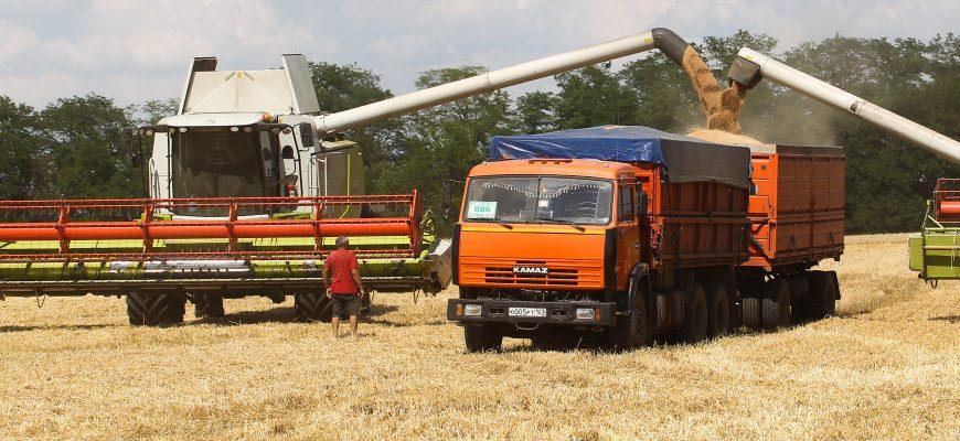 Намолот зерна в Казахстане на 316 тыс. тонн больше прошлогоднего