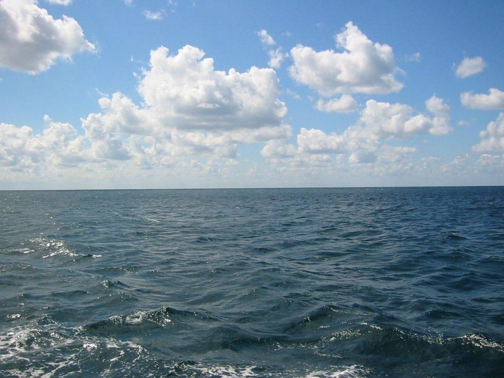В океанах плавает почти 5 трлн. пластиковых вещей — ФАО