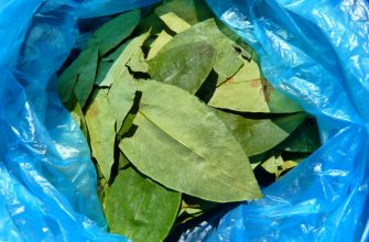 Колумбия обеспечивает 70% мирового кокаина