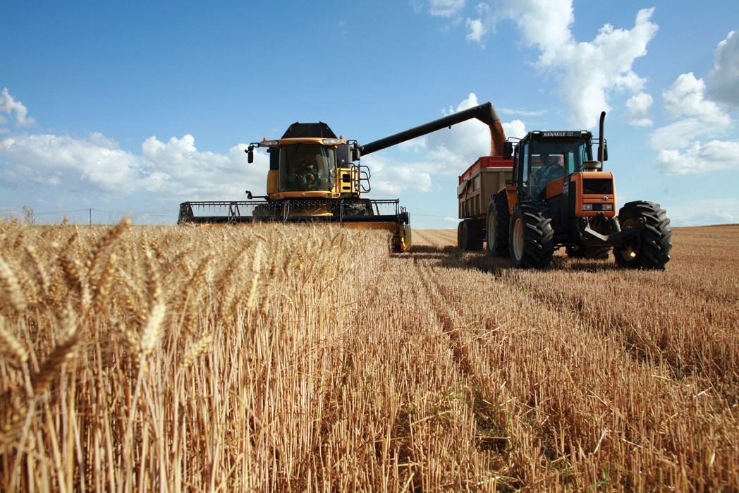 Уборка урожая с полей в картинках