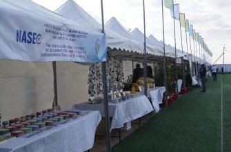 Молочно-товарная ферма на 1200 голов появится в селе Шага