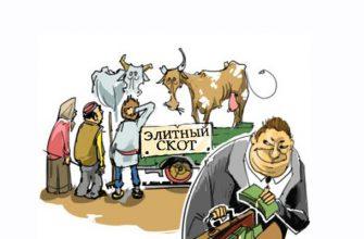 Мясных олигархов Казахстана отодвинули от бюджетной кормушки