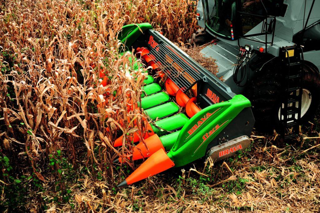 Маржа зернового производства в Казахстане снизилась, а в некоторых хозяйствах ушла в минус