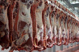 За первую часть октября мясо КРС в живом весе повысилось, а телятина и свинина снизились