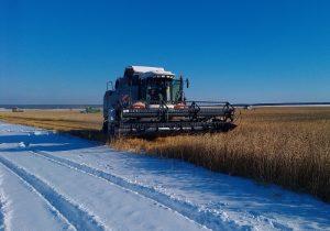 Минсельхоз сообщил о завершении уборки зерна-2019