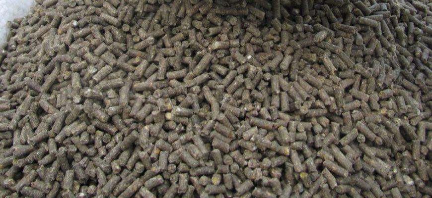 Китай разрешил импорт рапсового шрота из Казахстана