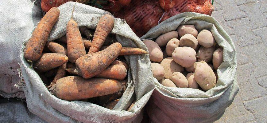 В Шымкенте реализуют социально значимые продукты прямо у рынков