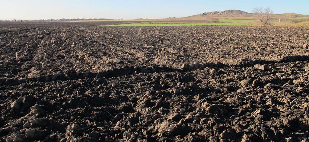 Минсельхоз увеличит налог на землю в 20 раз