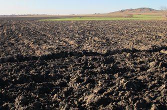 Десятки тысяч гектар изымают у нерадивых хозяев на Востоке