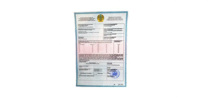 Сертификат обошелся предпринимательнице в 265 тысяч тенге