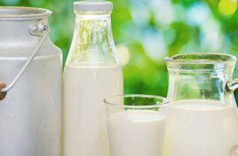 В Удмуртии готовы к переходу на круглосуточное производство молока