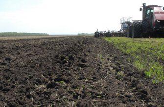 В 2020 г. в России с опережением графика начнут посев яровых