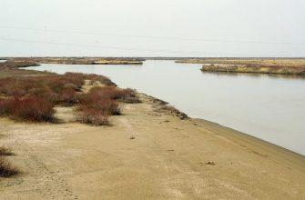Сельхозугодья защищены от паводков