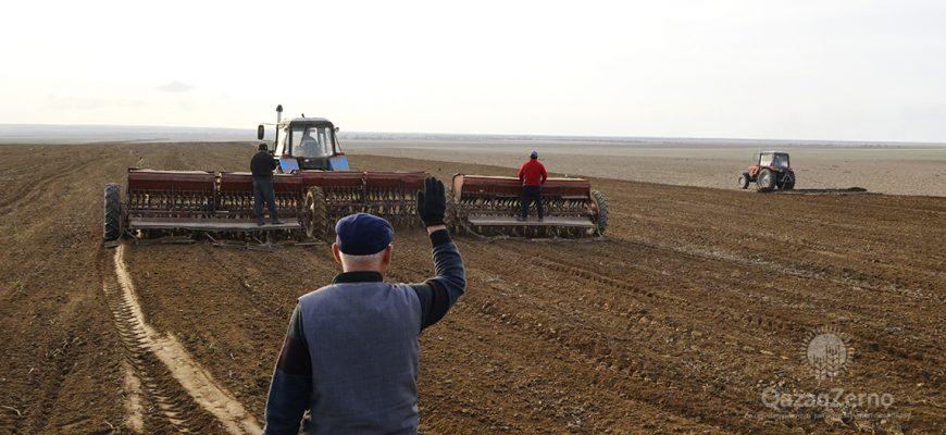 Жамбылские хозяйства вспахали 61,1 тыс. га из запланированных 94,1 тыс. гектар