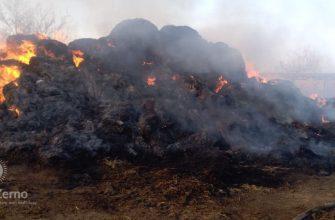 В Зайсане из мести сожгли сена на миллион тенге