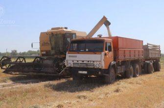Жамбылские фермеры начали жатву зерновых на две недели раньше