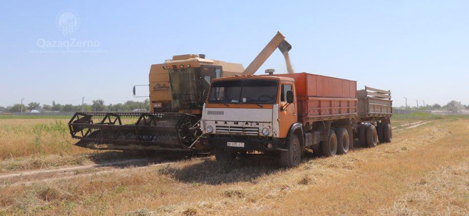 Уборку зерновых на Ставрополье завершат до конца недели