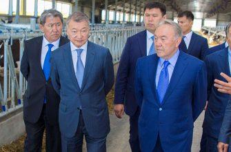 Инициативы Елбасы придали импульс развитию АПК Востока