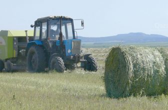 В разгаре заготовка сена