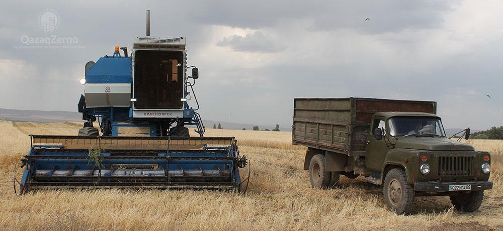 В Казахстане убрано почти 15 млн гектар зерновых