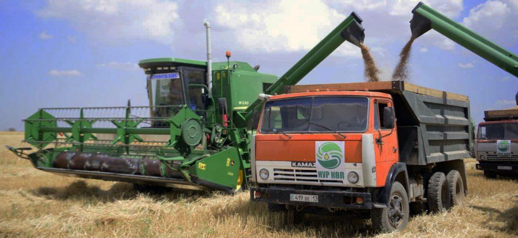 Сентябрь значительно взвинтил цены на мировую и казахстанскую пшеницу