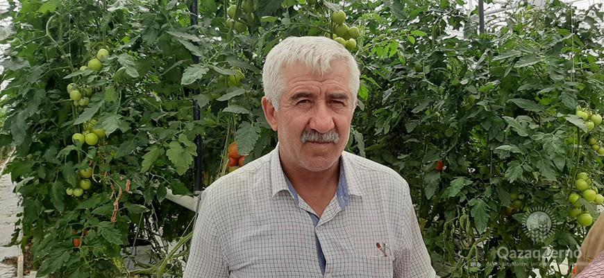 Овощное царство