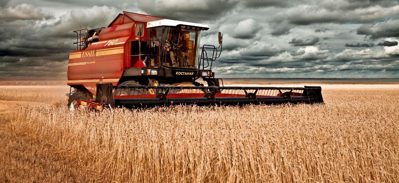 На элеватор поступило 2 млн 296 тыс тонн зерна пшеницы ржи и ячменя схемы работ на конвейере