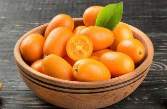 Кумкват – «золотой апельсин» от простуды, депрессии и похмелья