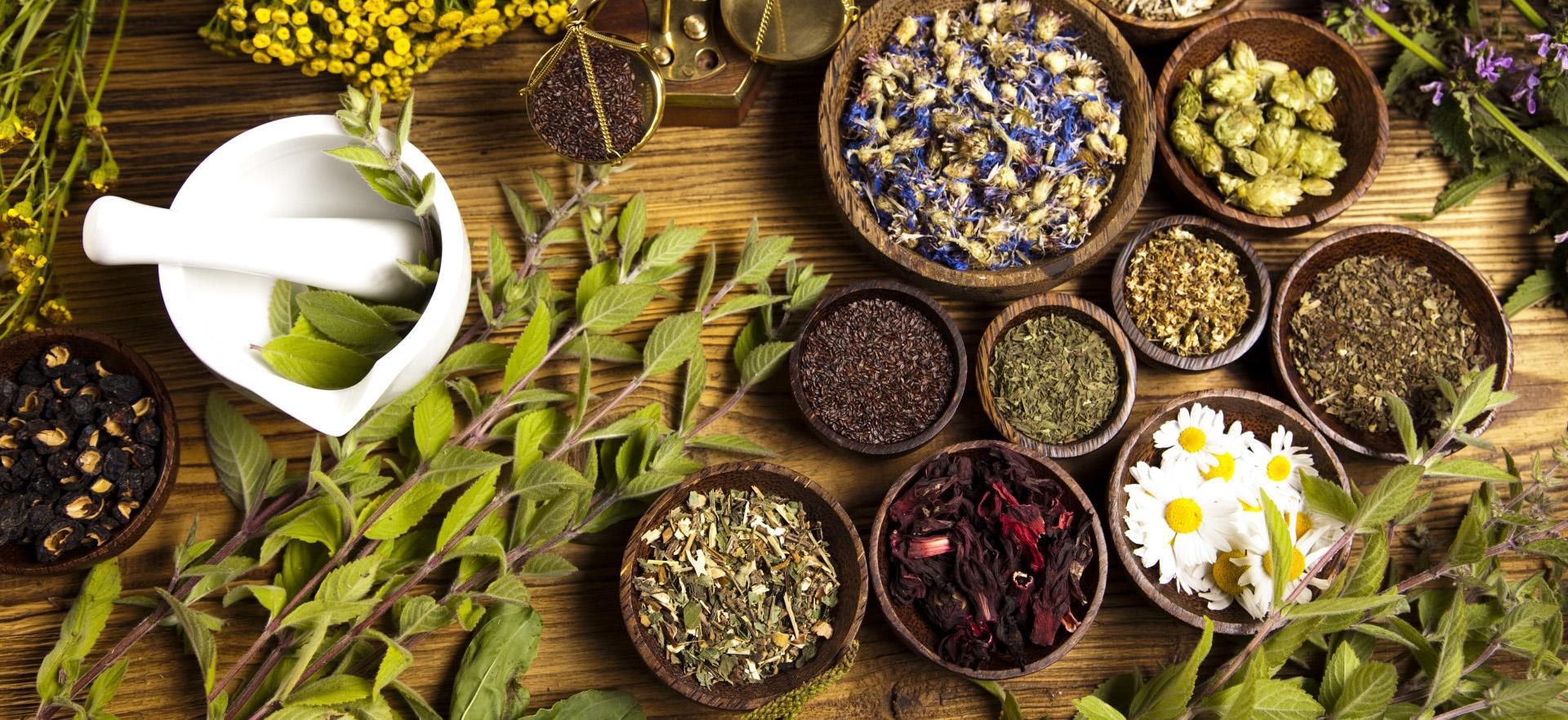 Экспорт лекарственных трав из Алтайского края вырос в 86 раз