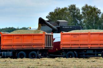 Омичи нелегально везут зерно на реализацию в Казахстан