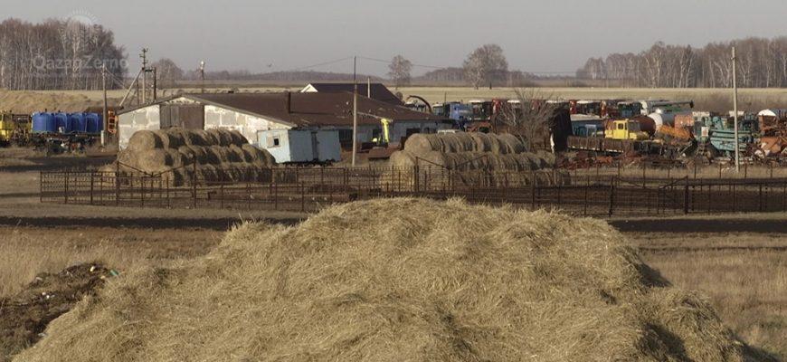 Без права на паи: село Дубровное
