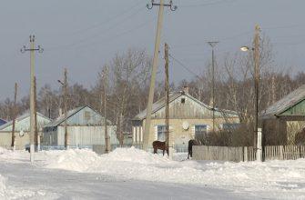 Кадровый голод: готова ли казахстанская молодежь работать в селах?