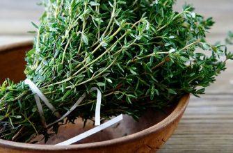Соком полнится зелена трава, от болезни вас охранит она