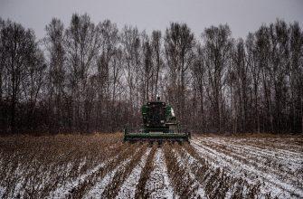 Выиграет ли Россия и ее экономика в ходе климатического кризиса