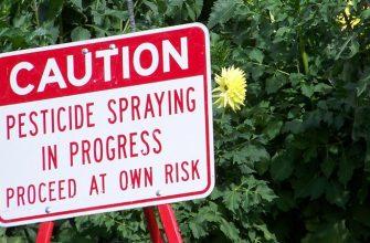 В мире ужесточают контроль за использованием пестицидов