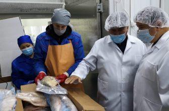 На Востоке намерены в 30 раз увеличить объем продукции аквакультуры