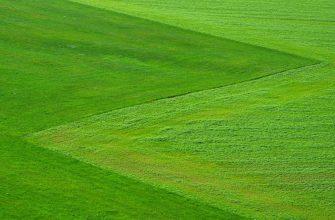 В Жамбылской области разработают карту землепользования