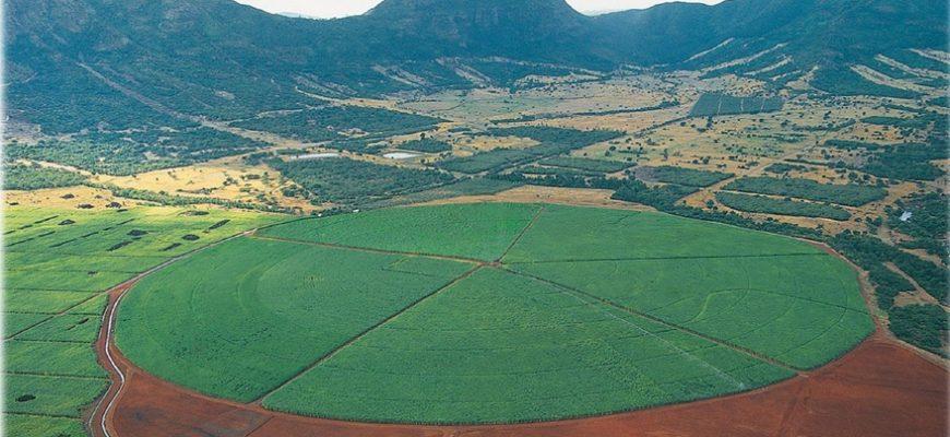 Как НАНОЦ поможет фермерам экономить воду