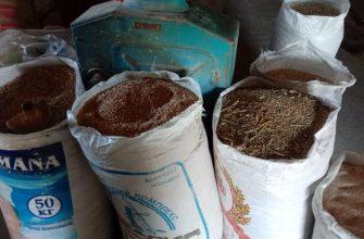 Корма можно производить и в Кызылорде
